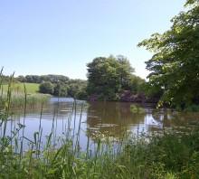 Galloway Gardens, Rhins of Galloway